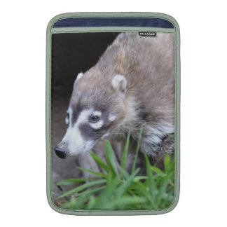 Prowling Coati MacBook Air Sleeves