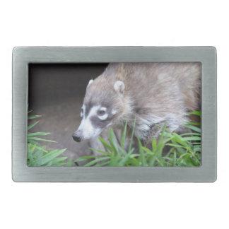 Prowling Coati Rectangular Belt Buckle