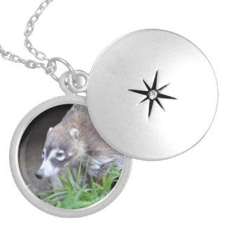 Prowling Coati Round Locket Necklace