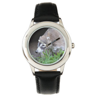 Prowling Coati Watch