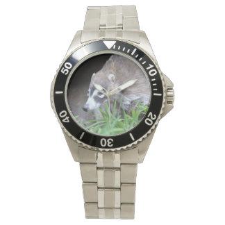 Prowling Coati Watches