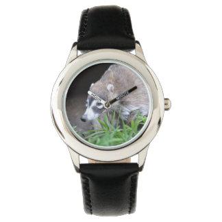 Prowling Coati Wrist Watches