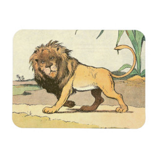 Prowling Jungle Lion Illustrated Magnet