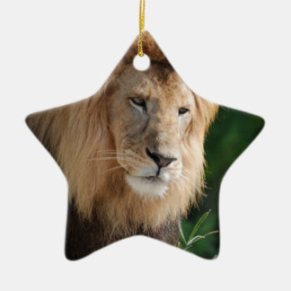 Prowling Lion Ceramic Ornament