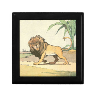 Prowling Lion Gift Box