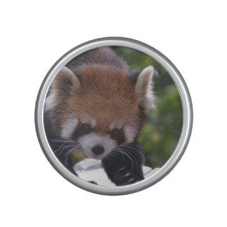 Prowling Red Panda Bluetooth Speaker