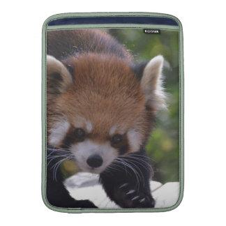 Prowling Red Panda MacBook Air Sleeve