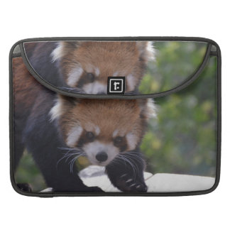 Prowling Red Panda Sleeves For MacBook Pro