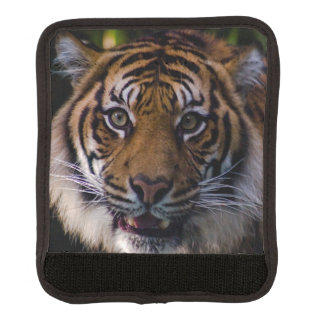 Prowling Sumatran Tiger Luggage Handle Wrap