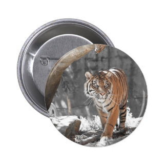 Prowling Tiger Pin