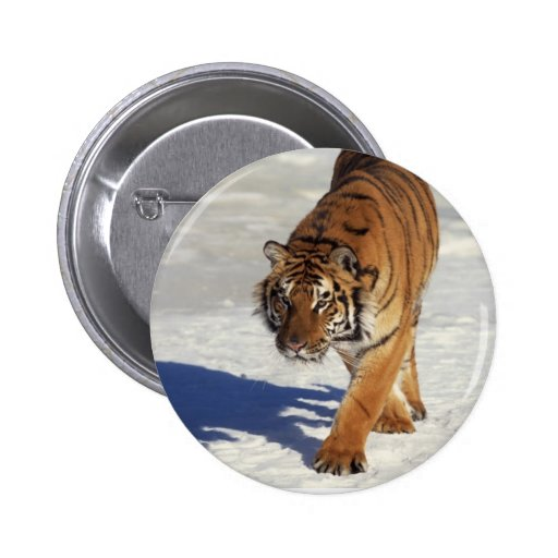 Prowling Tiger Buttons