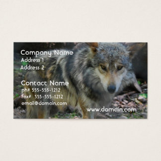Prowling Wolf Business Cards