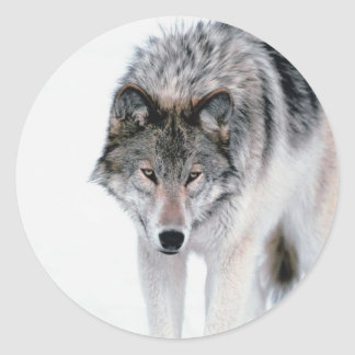 Prowling Wolf Classic Round Sticker