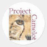 Proyecto Camelot (mirada resistida) Etiqueta Redonda