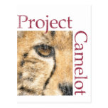 Proyecto Camelot (mirada resistida) Postales