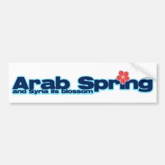 Proyecto de la caridad: Primavera del árabe de la Pegatina Para Auto