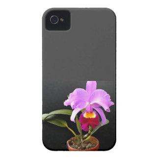 Proyector en orquídea púrpura Potted iPhone 4 Cárcasas