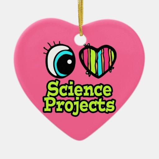 Proyectos brillantes de la ciencia del amor del adorno de cerámica en forma de corazón