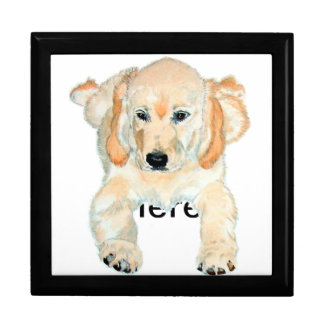 Prudence the English Retriever Pup Gift Box