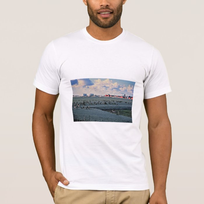 Prudhoe Bay, Alaska T-Shirt