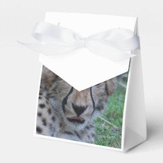 Prueba del guepardo cajas para regalos de fiestas