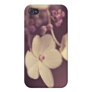 Prune Floral Speck Case iPhone 4/4S Cover