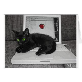 Prunella black cat lounging on laptop card