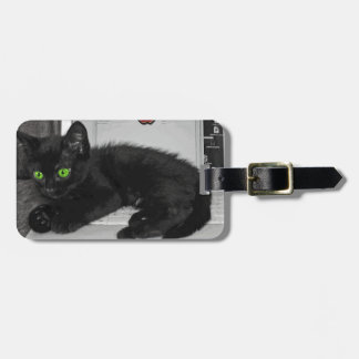 Prunella black cat lounging on laptop luggage tags