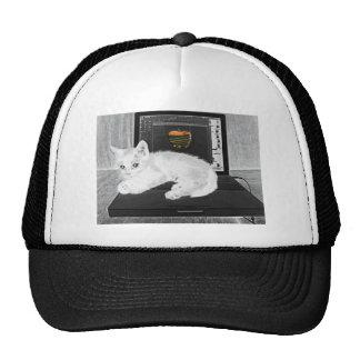 Prunella white cat lounging on laptop trucker hat