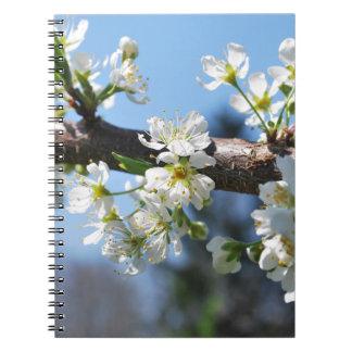 Prunus Blossom Spiral Notebooks