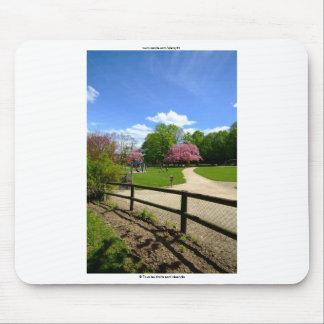 Prunus Park in Velvia Film Mousepad