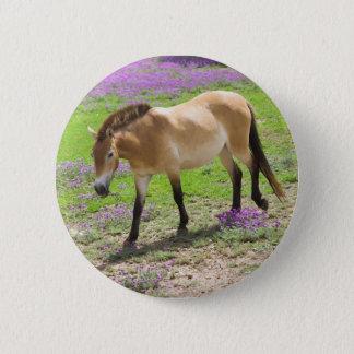 Przewalski Horse Button