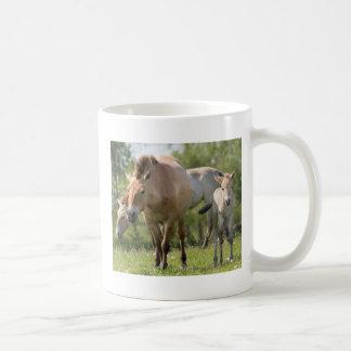 Przewalski's Horse and foal walking Coffee Mug