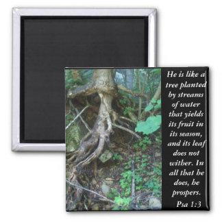 Psa 1:3 magnet