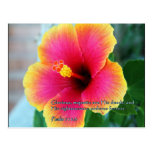 Psalm 111:3 Hibiscus Post Card