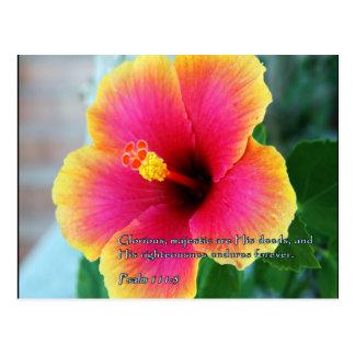 Psalm 111:3 Hibiscus Postcard