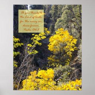 Psalm 136:3 Poster print