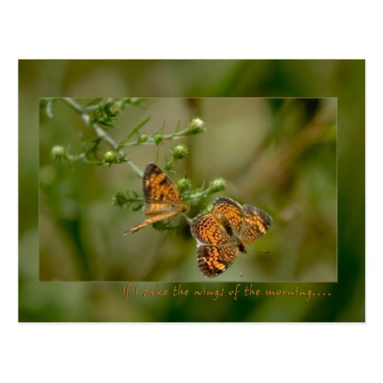 Psalm 139:9 -10 If I rise on the wings of morning Postcard