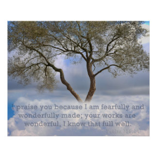 Psalm 139: I am fearfully and wonderfully created Poster