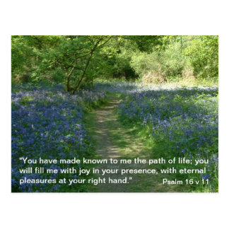 Psalm 16 v 11 | Path of Life | Bluebells Postacrd Postcard