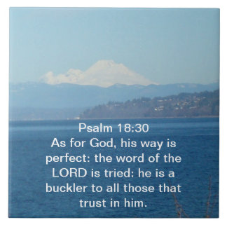 Psalm 18:30 Tile