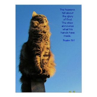 Psalm 19:1 Angel Cat Meme Poster