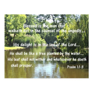 Psalm 1:1-3 Blessed is the man that walketh not in Postcard