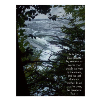 Psalm 1:3 poster