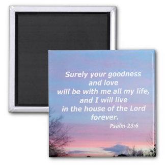 Psalm 23:6 magnet