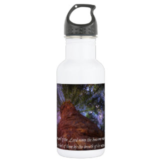 Psalm 33:6 Starry Night Stainless Steel Water Bottle
