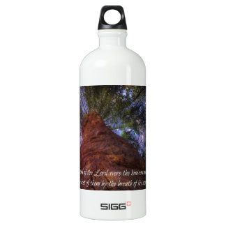 Psalm 33:6 Starry Night Water Bottle