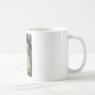 Psalm 37:5-6 coffee mug