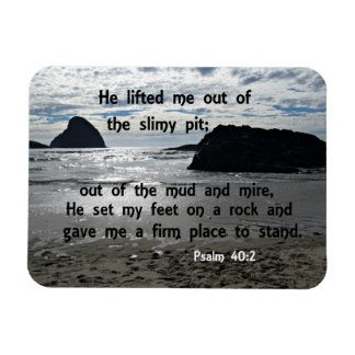 Psalm 40:2 He lifted me out of the slimy pit Magnet