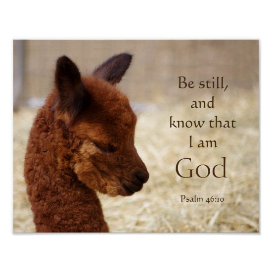 Psalm 46:10 Alpaca Poster